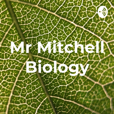 Mr Mitchell Biology