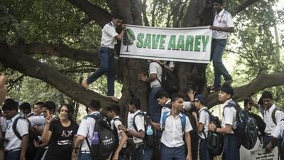 Aarey Colony Deforestation || Save Aarey