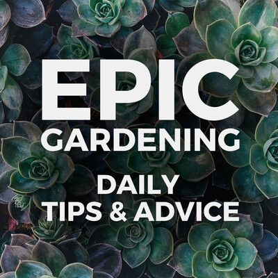 Epic Gardening: Daily Growing Tips and Advice