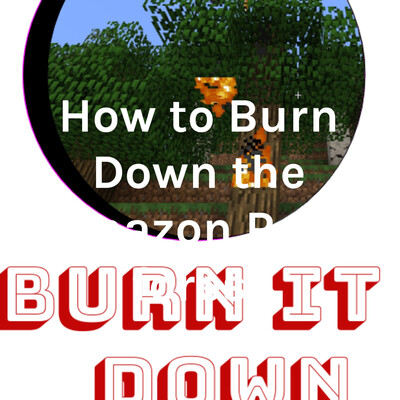 How to Burn Down the Amazon Rain forest