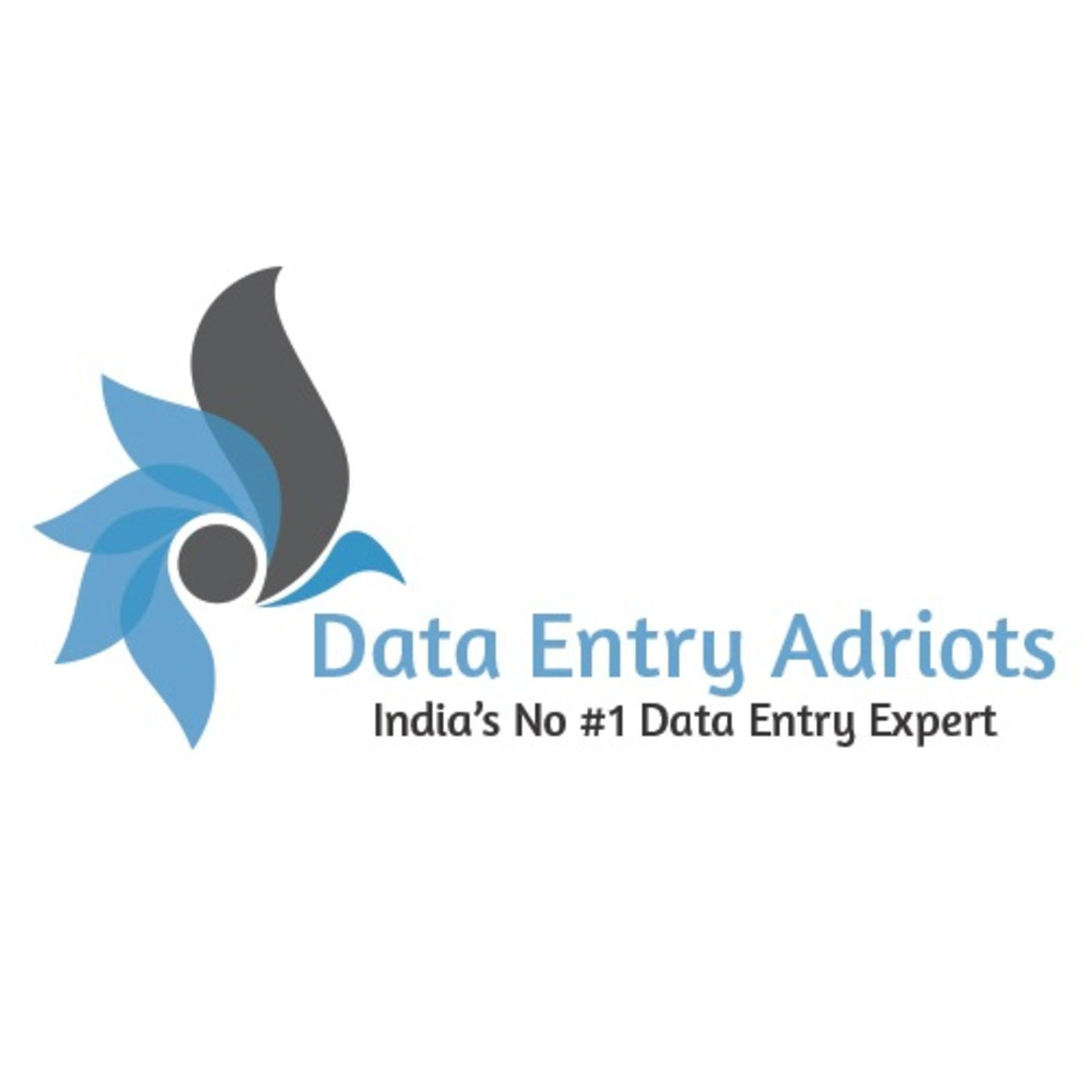 Data Entry Adroits