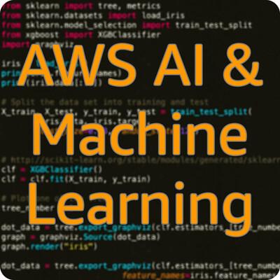 AWS AI & Machine Learning
