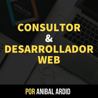 Consultor y Desarrollador Web