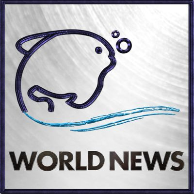Lehren World News