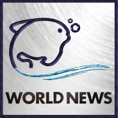Lehren World News