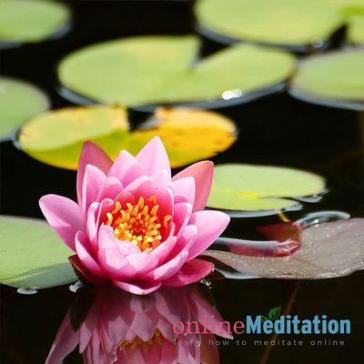 Online Meditation Course